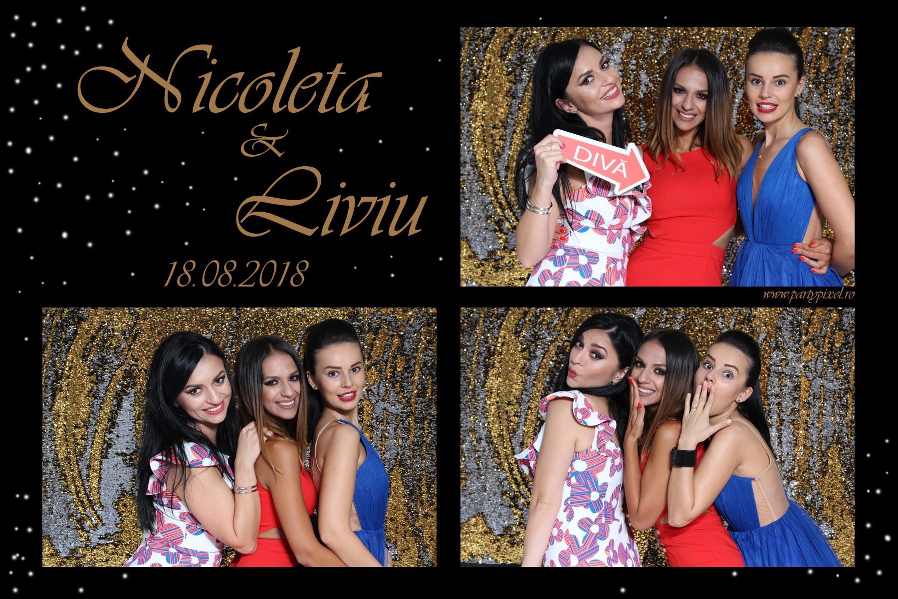 Cabina foto nunta Nicoleta si Liviu